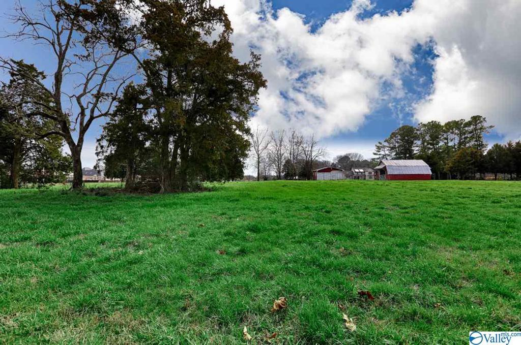 Photo of home for sale at 0 Burgreen Road, Madison AL