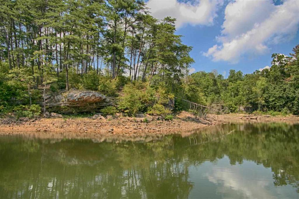 Photo of home for sale at 0 County Road 243, Arley AL