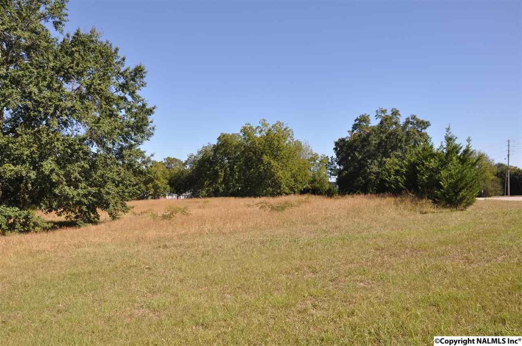 Photo of home for sale at 0 Alabama Highway 69, Arab AL