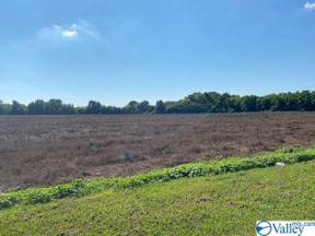 Property for sale at 000 COUNTY LINE ROAD S, Madison,  Alabama 35756