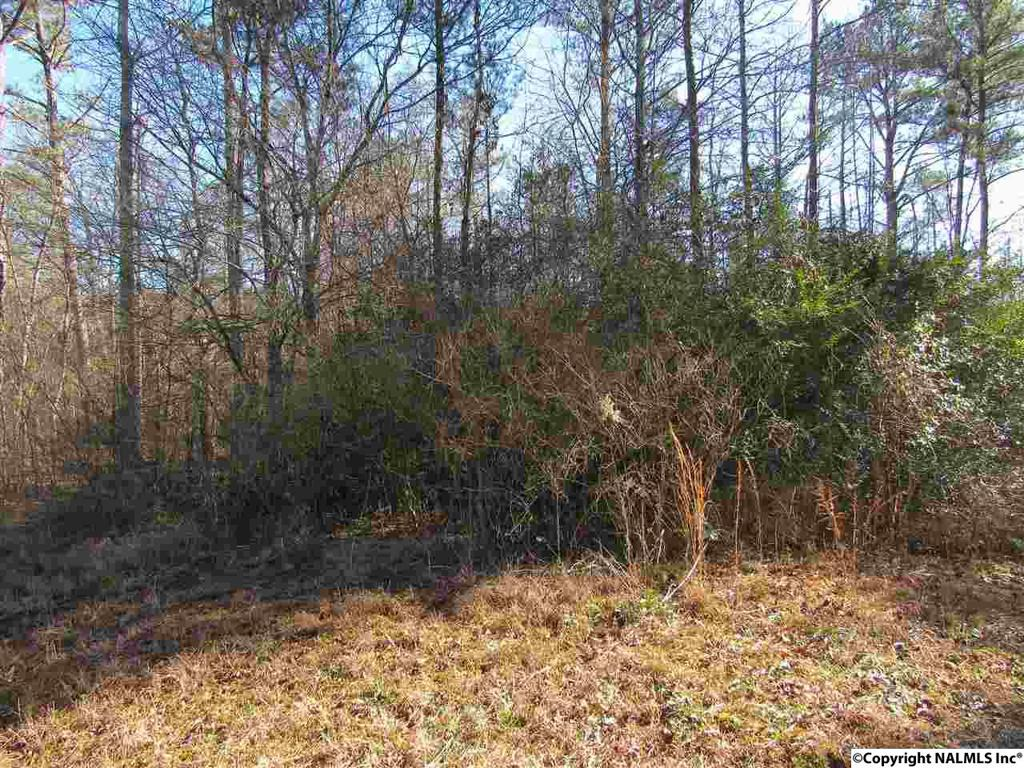 Photo of home for sale at Burress Road, Gurley AL