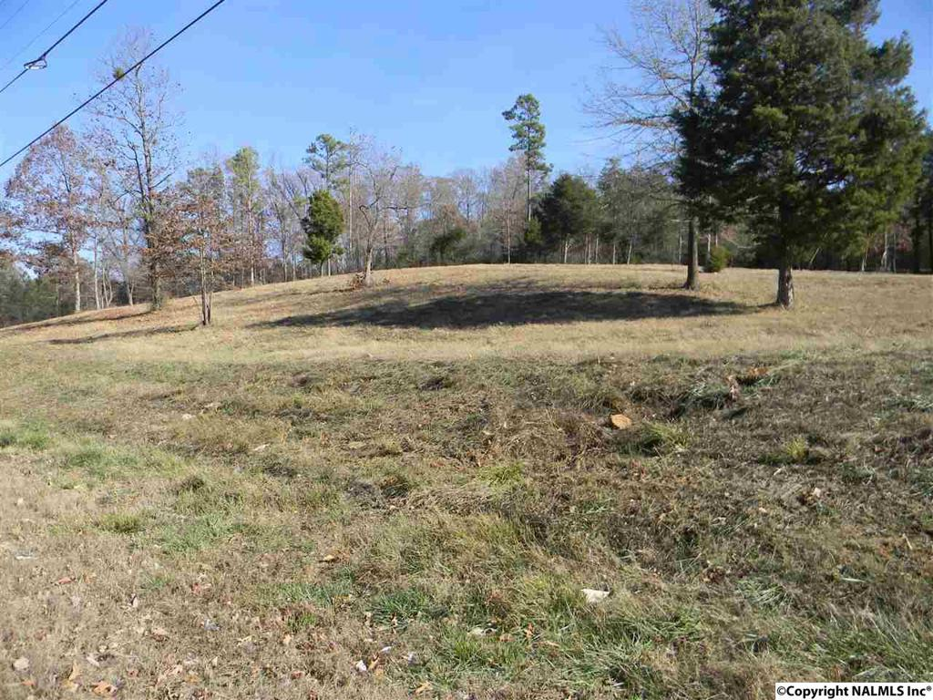 Photo of home for sale at 000 Center Springs Road, Somerville AL