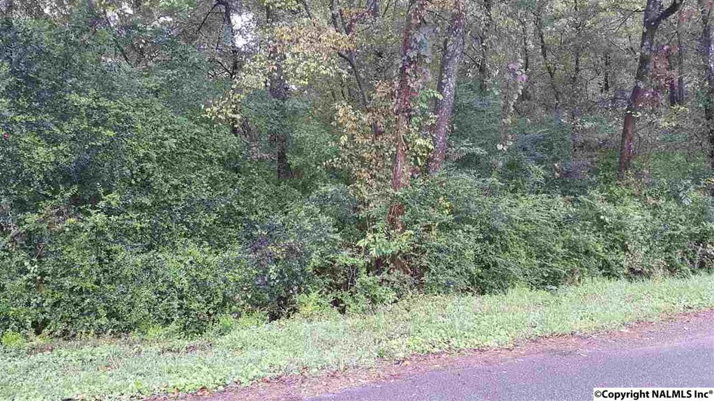 Photo of home for sale at Lot 2 Palmer Street S, Guntersville AL