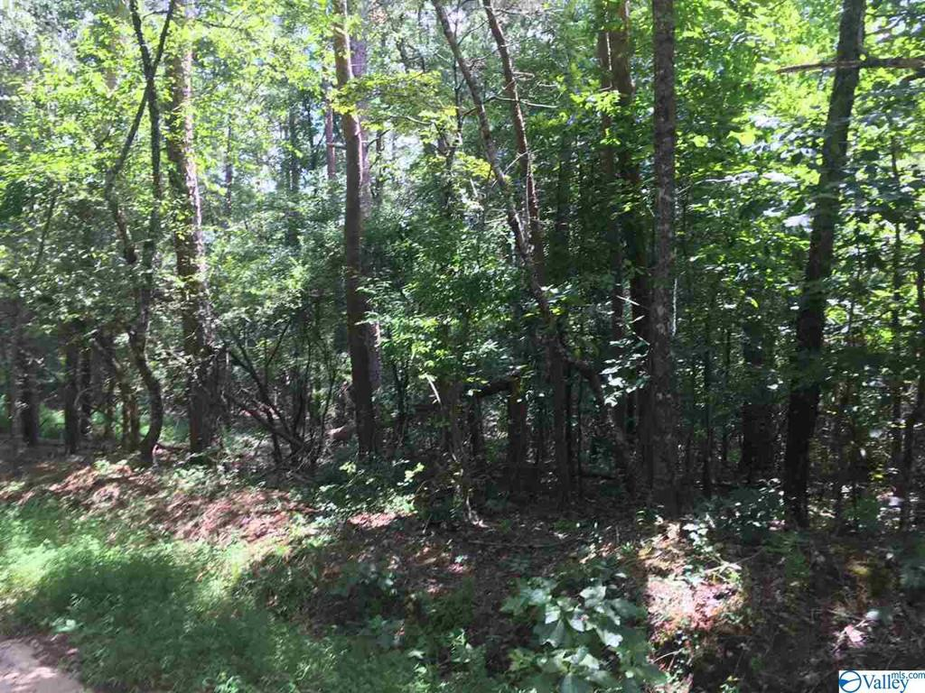 Photo of home for sale at A County Road 387, Cedar Bluff AL
