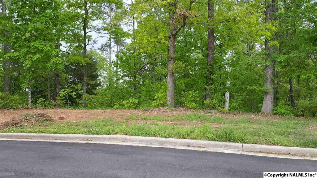 Photo of home for sale at Crooked Stick Lane, Guntersville AL
