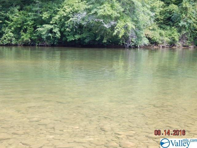 Photo of home for sale at 10 County Road 766, Cedar Bluff AL