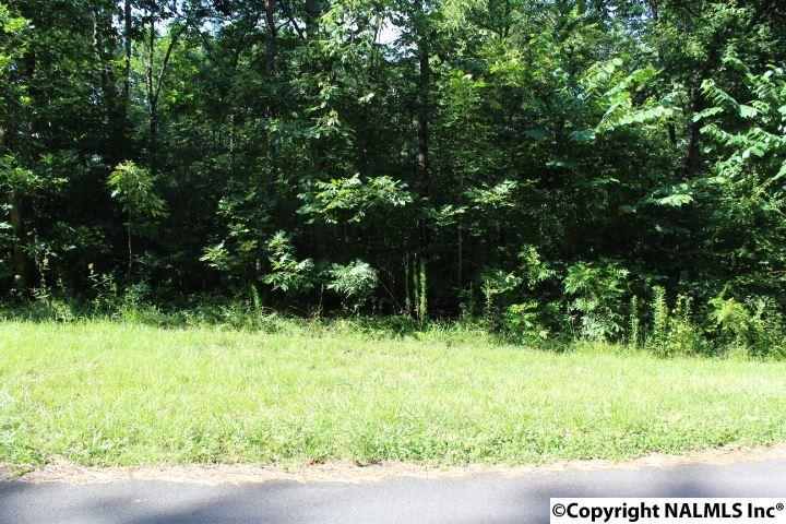 Photo of home for sale at LOT 10 BLOCK 1 Pine Lake Trail, Arab AL