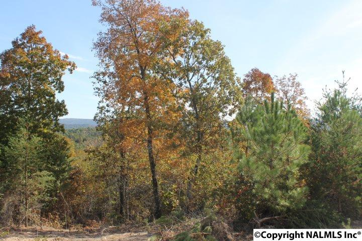 Photo of home for sale at Lot 5 Hillside Drive, Fort Payne AL