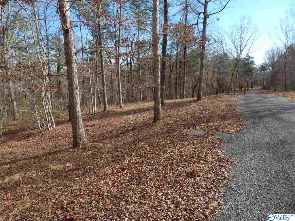 Photo of home for sale at LOT 5 Road 935, Mentone AL