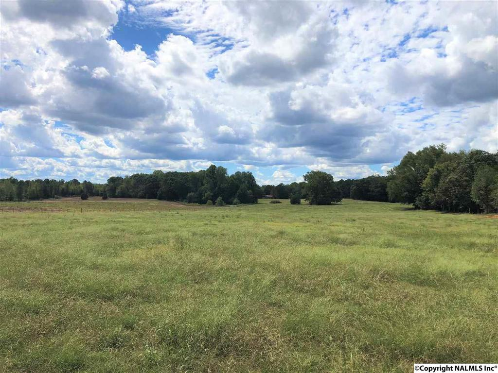 Photo of home for sale at 2777 County Road 11, Florence AL