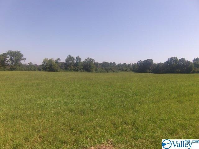 Photo of home for sale at Half Section Line Road, Albertville AL