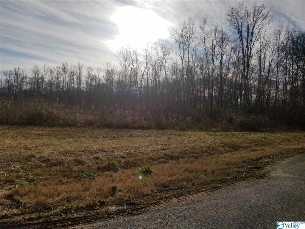 Photo of home for sale at 218 Randall Mullins Road, Toney AL