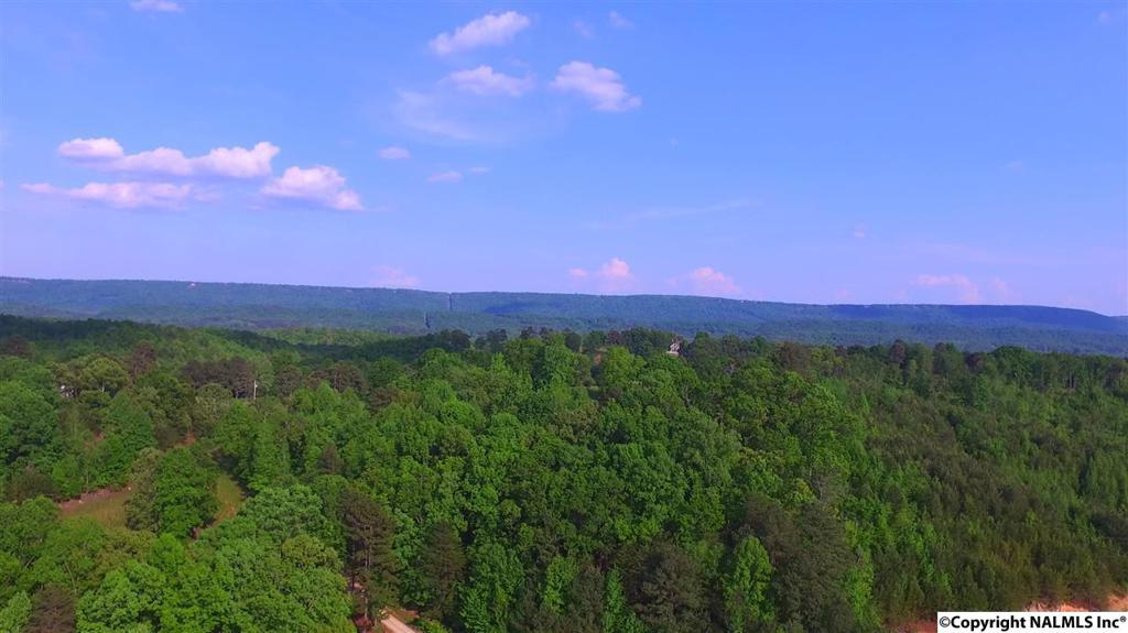 Photo of home for sale at 1571A County Road 751, Valley Head AL