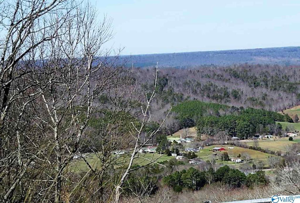 Photo of home for sale at Tract 2 County Road 107, Fort Payne AL
