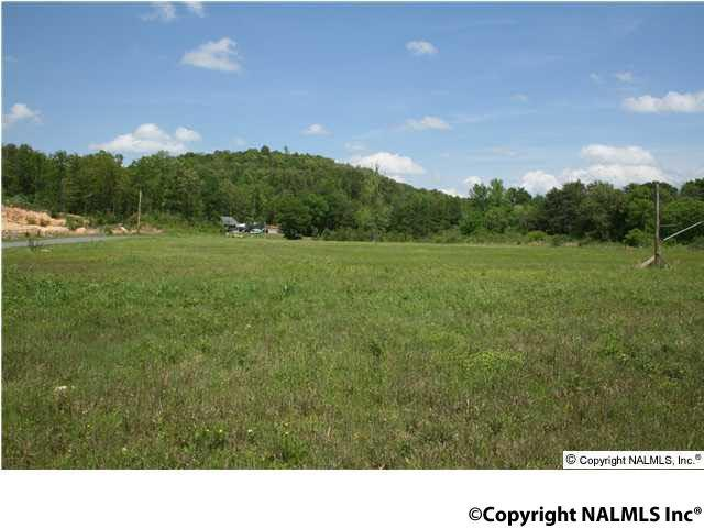 Photo of home for sale at Highway 35, Fort Payne AL