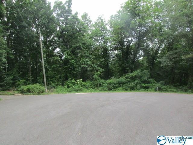 Photo of home for sale at 0 Riverview Lane, Glencoe AL