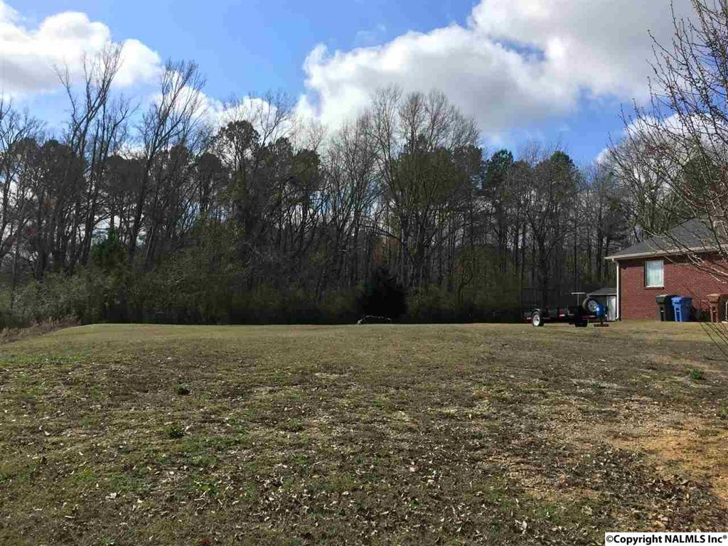 Photo of home for sale at Hunter Lane, Hartselle AL