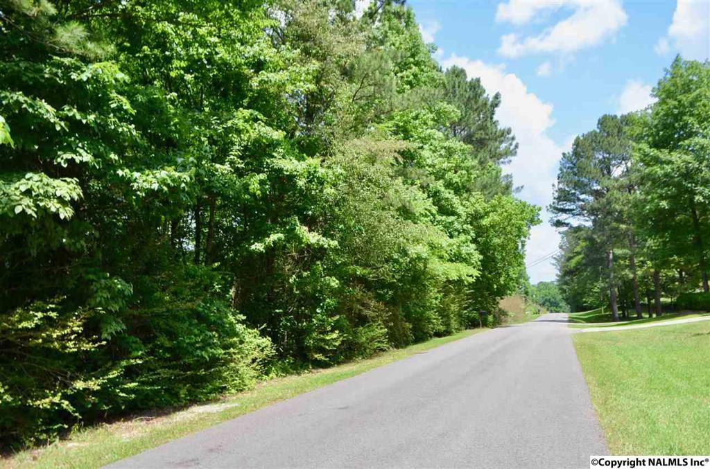 Photo of home for sale at Berkley Hills Drive W, Southside AL
