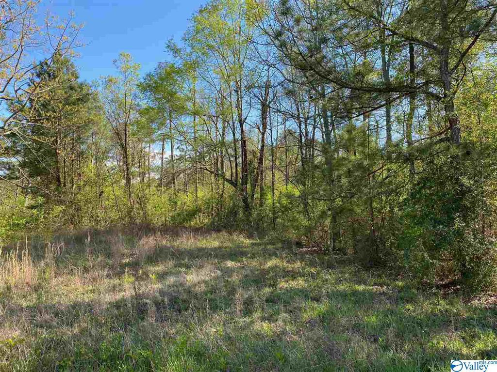 Photo of home for sale at 0 County Road 380, Centre AL