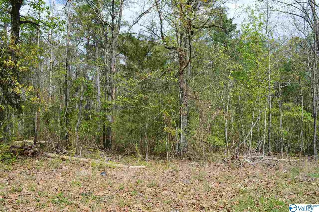 Photo of home for sale at Lot 34 County Road 608, Cedar Bluff AL