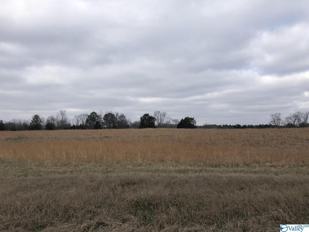 Photo of home for sale at 000 County Road 226, Moulton AL
