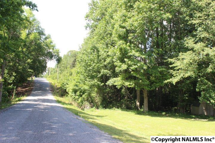 Photo of home for sale at County Road 233, Rainsville AL