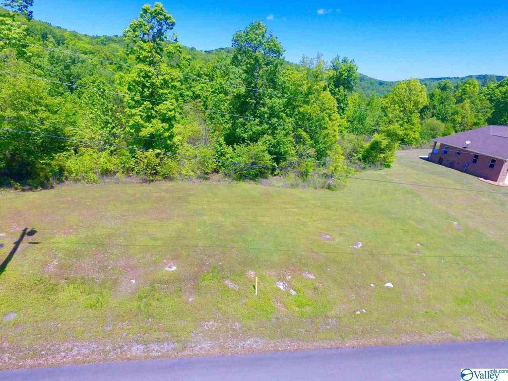 Photo of home for sale at 34 Tara Drive, Guntersville AL