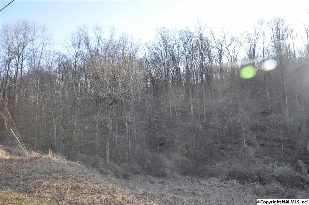 Photo of home for sale at 0 Nesmith Road, Guntersville AL