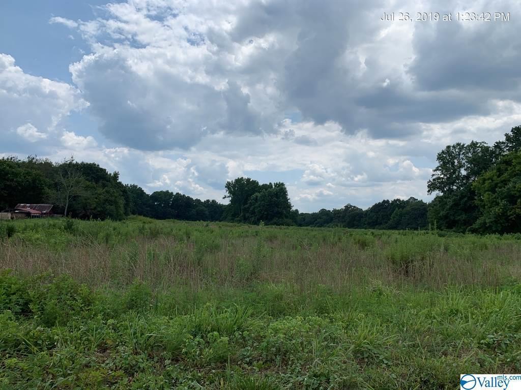 Photo of home for sale at Tr. 2 Dodd Road, Guntersville AL