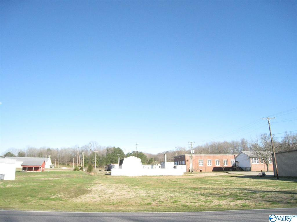 Photo of home for sale at 7292 Hwy 207, Anderson AL