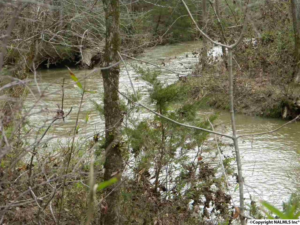 Photo of home for sale at 2951 Browder Road, Fort Payne AL