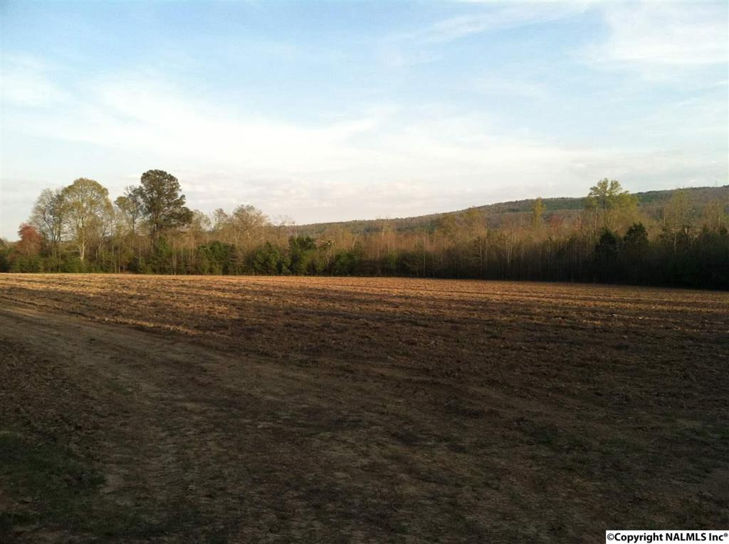 Photo of home for sale at County Road 319, Collinsville AL