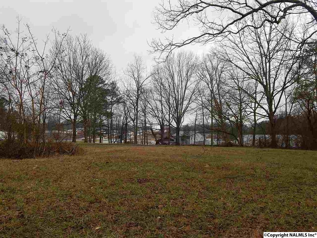 Photo of home for sale at Highway 231, Laceys Spring AL
