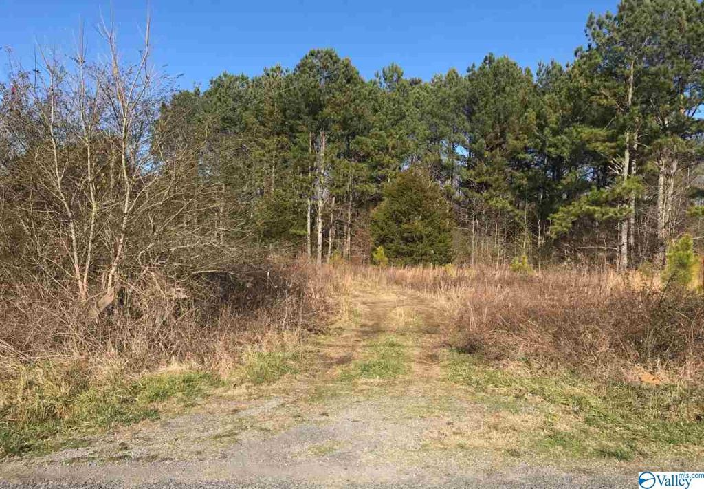 Photo of home for sale at 0 Junkins Road, Guntersville AL