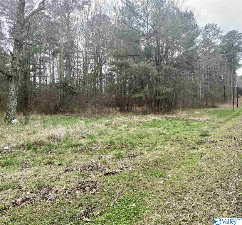 Photo of home for sale at 636 Tabor Road, Gadsden AL