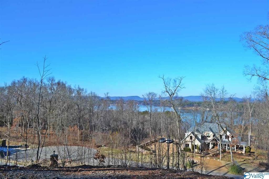 Photo of home for sale at 0 Pinnacle Point, Scottsboro AL