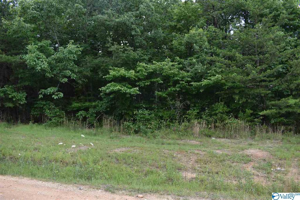 Photo of home for sale at lot 30 County Road 1025, Fort Payne AL