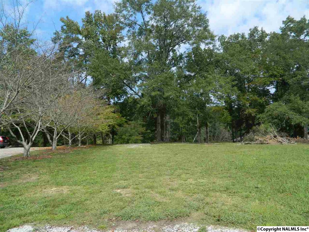 Photo of home for sale at River Run Road, Southside AL