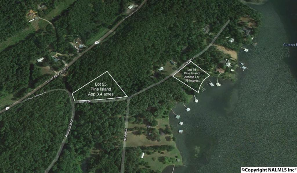 Photo of home for sale at 555555 Pine Island Circle, Scottsboro AL