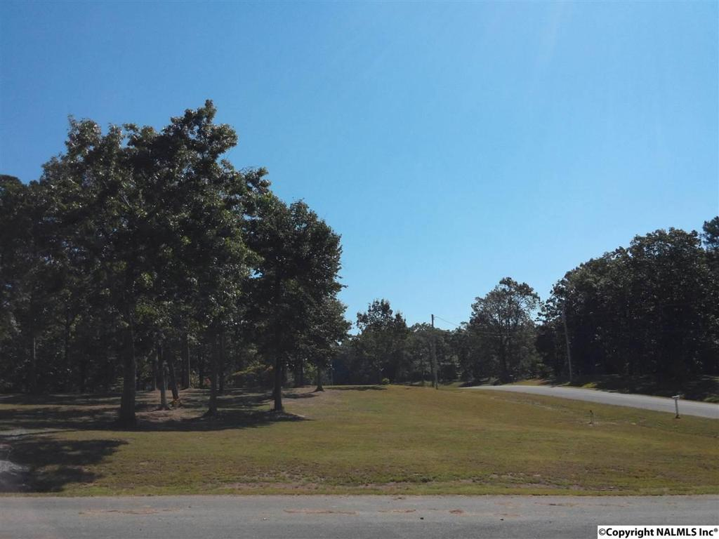 Photo of home for sale at 159 Ridgecreek Drive, Gurley AL