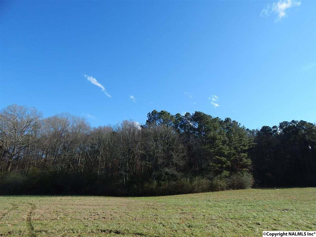 Photo of home for sale at Browns Valley Road, Guntersville AL