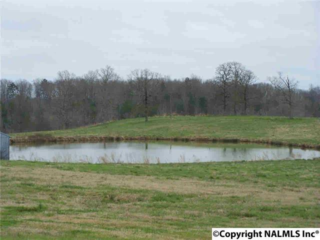Photo of home for sale at County Road 250, Moulton AL