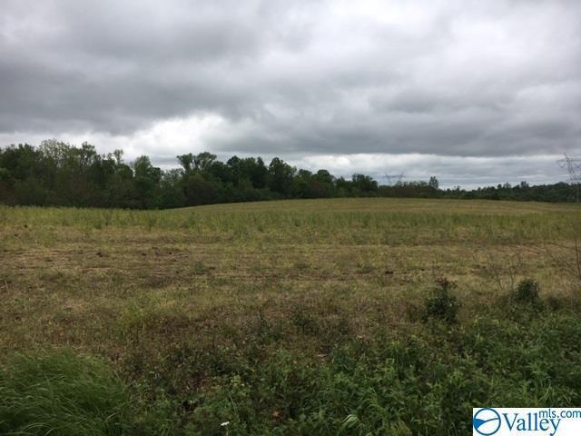 Photo of home for sale at 0 Swords Road, Albertville AL
