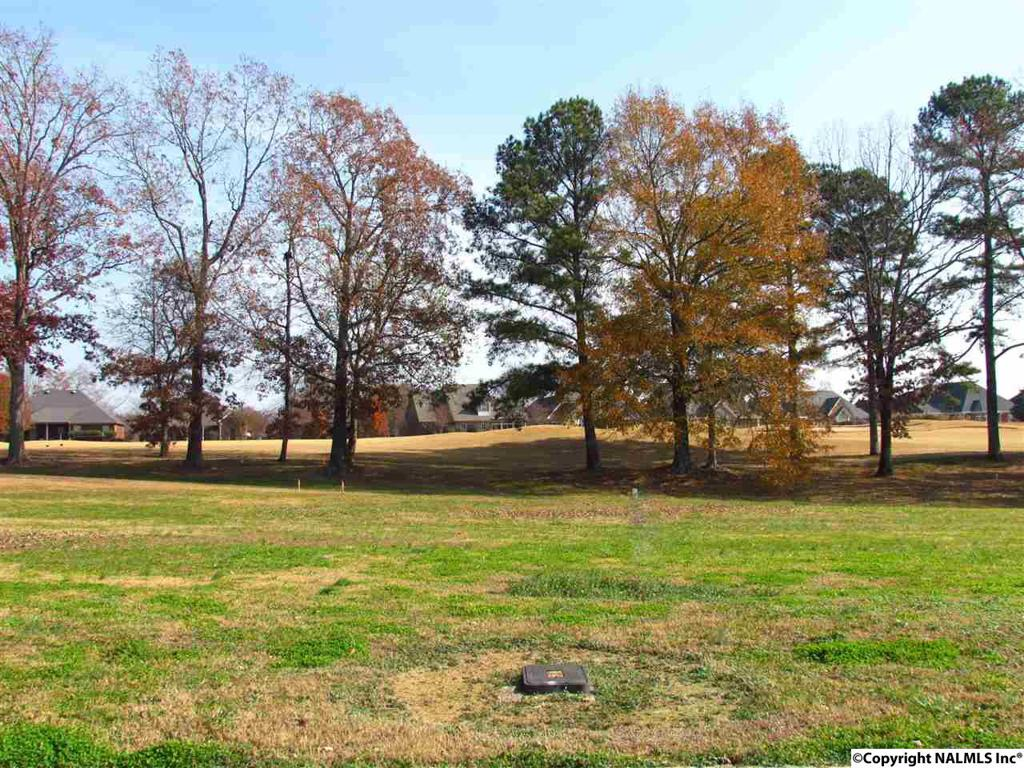 Photo of home for sale at 14290 Muirfield Drive, Athens AL