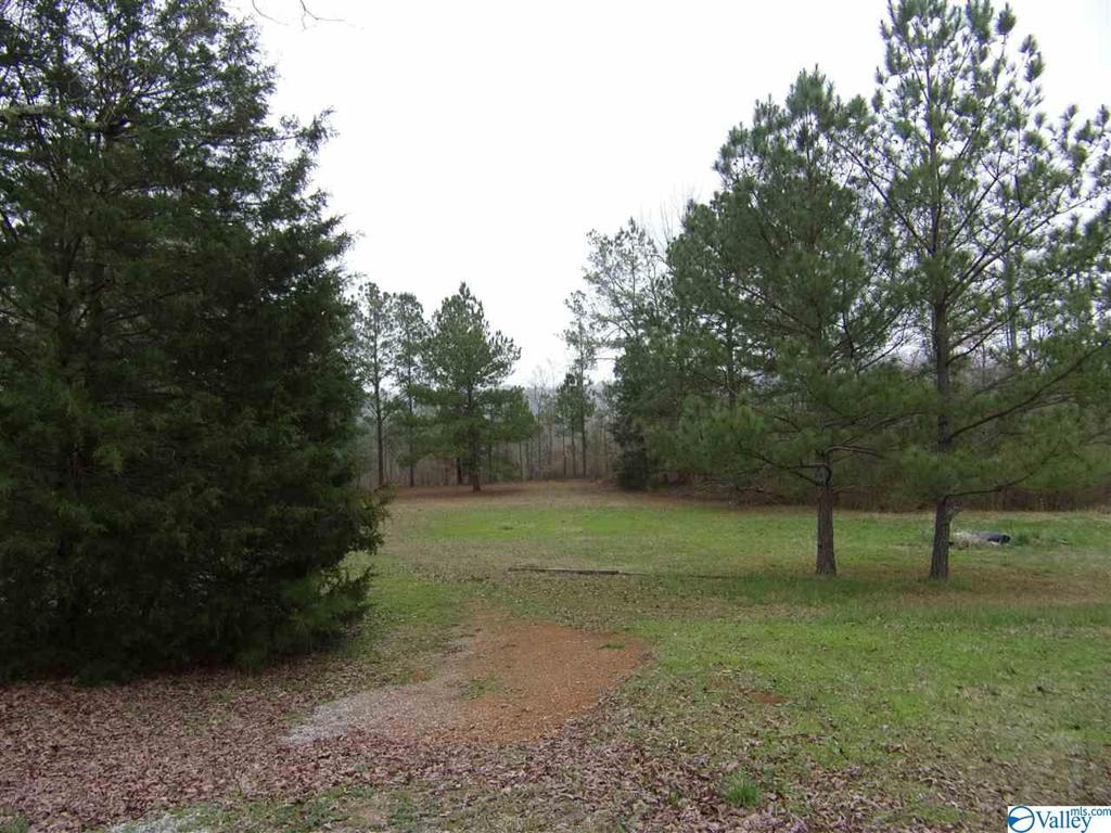 Photo of home for sale at 1326 Pine Ridge Road, Wellington AL