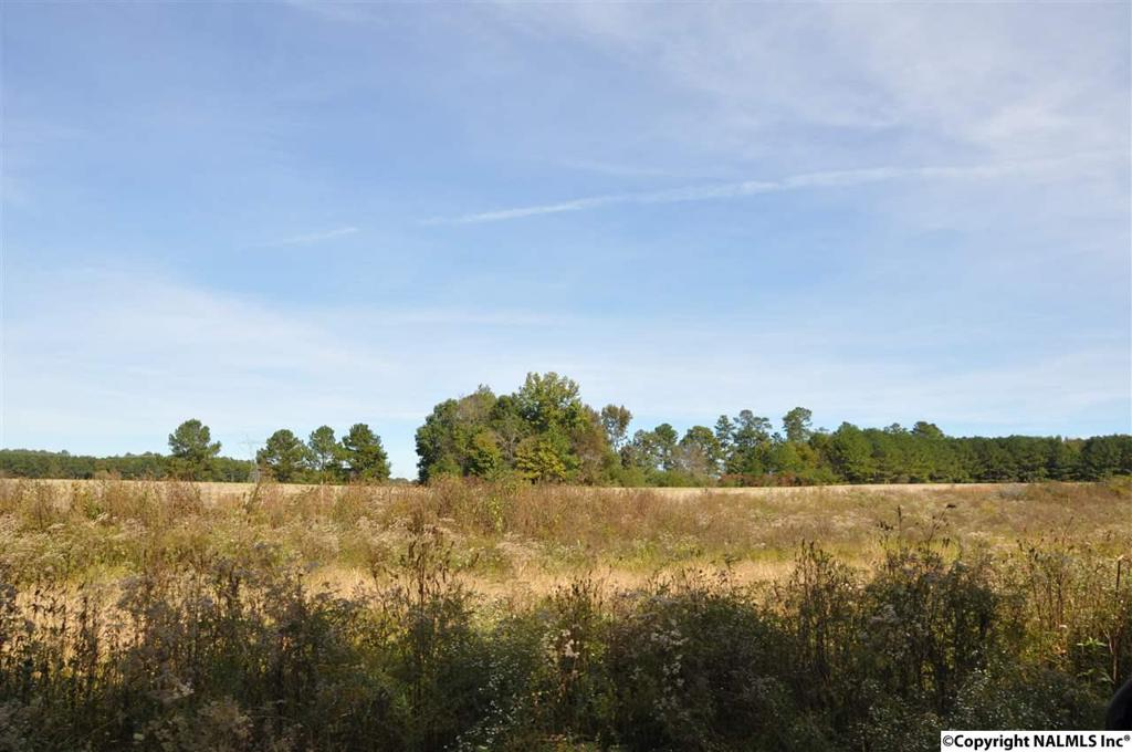 Photo of home for sale at 00 County Road 43, Section AL