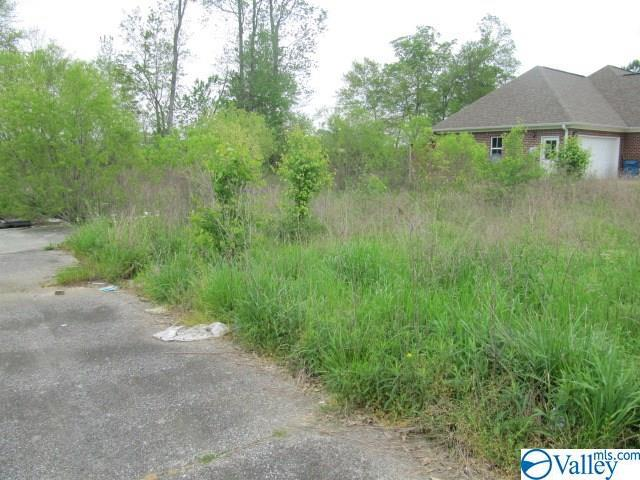 Photo of home for sale at 180 Shaw Street, Albertville AL