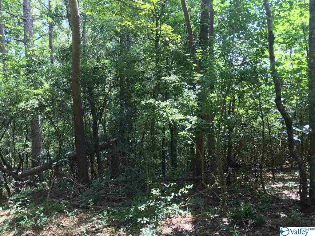 Photo of home for sale at B County Road 387, Cedar Bluff AL