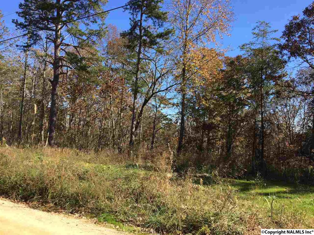 Photo of home for sale at 100 County Road 861, Gaylesville AL