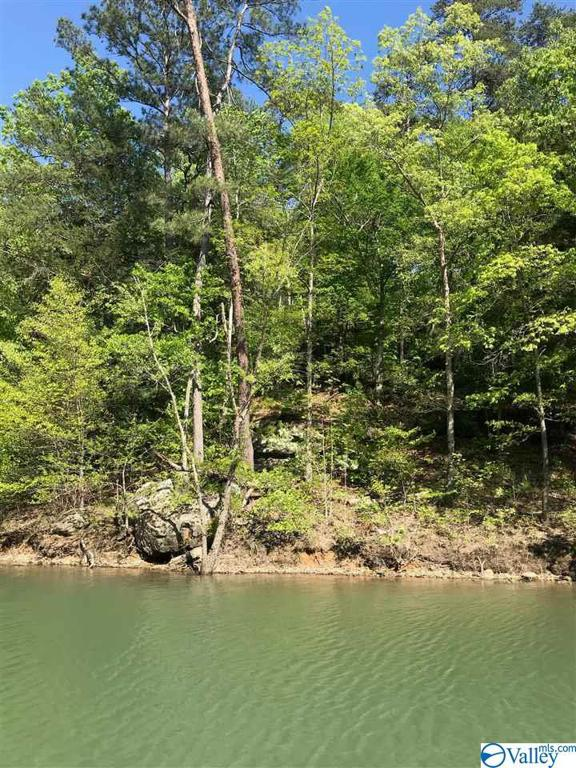Photo of home for sale at 43 Sipsey Overlook, Double Springs AL